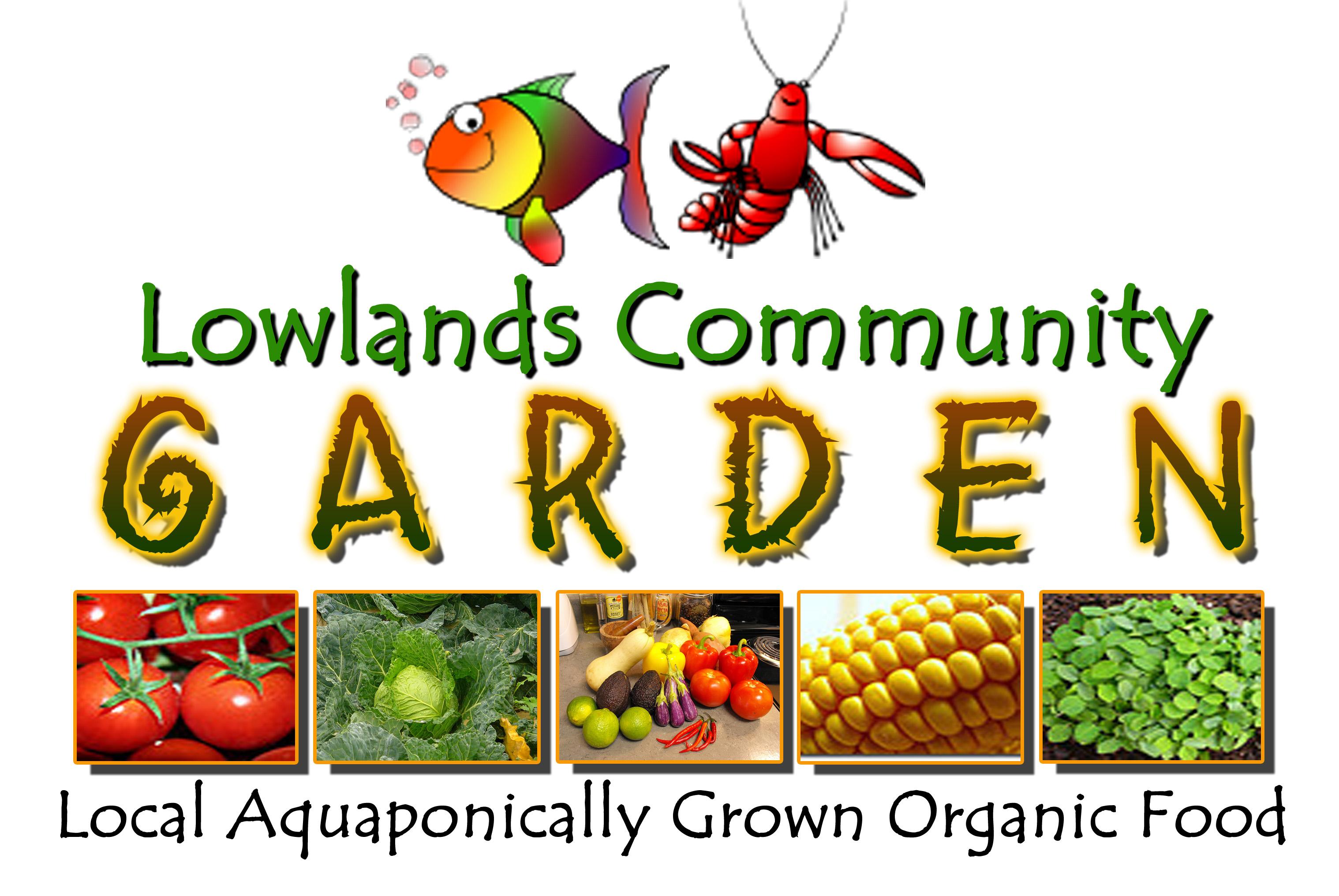Introducing the Lowlands Community Garden