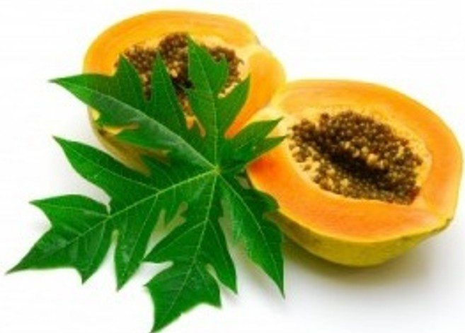 Fast cure for Chikungunya and Dengue is the local Papaya leafs