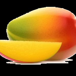 mango-st-maarten-agriculture-community-garden