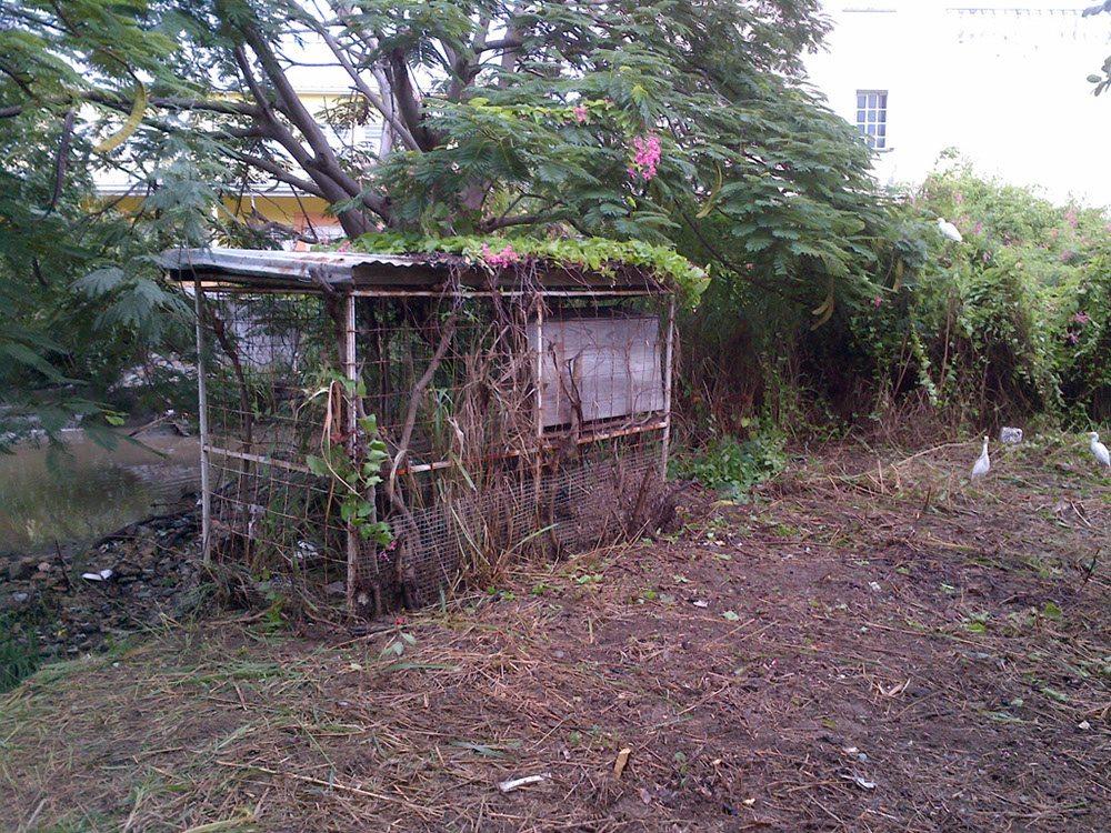 A clean Emilio Wilson Park by ERMAF Foundation