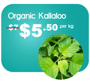 best-products–banner-callaloo-st-maarten-agriculture